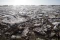 Rāznas ezerā ugunsdzēsēji glābj trīs uz ledus iestrēgušus jauniešus