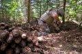 """Latvijā sestdien sāksies militārās mācības """"Detonators"""""""