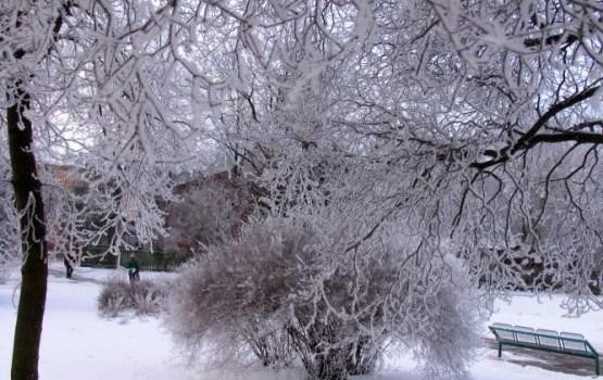 Jaunais šīs ziemas aukstuma rekords -22,5 grādi Dobeles novadā