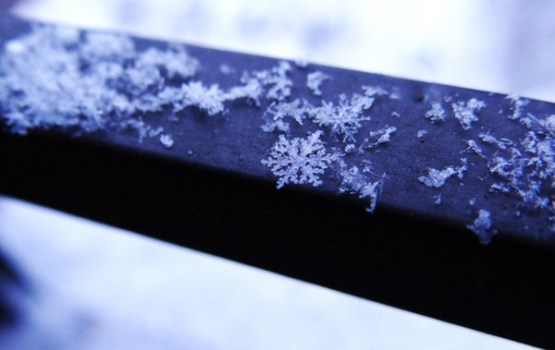 Latgalē izveidojusies līdz astoņiem centimetriem bieza sniega sega