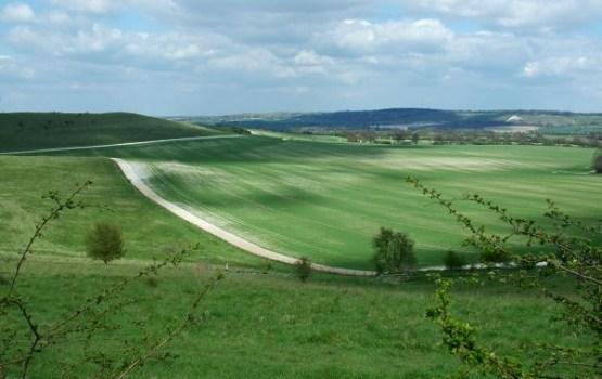 Aptauja: 97% iedzīvotāju uzskata, ka lauksaimniecībai Latvijā ir nākotne