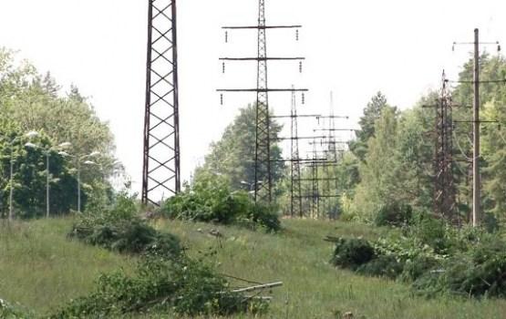 Daugavpilī tiek veikti bīstamo koku nozāģēšanas darbi