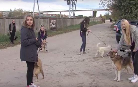 4.oktobrī brīvprātīgie jaunieši devās uz dzīvnieku patversmi