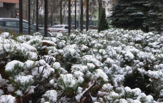 Svētdien Latvijā gaidāms spēcīgs sniegputenis