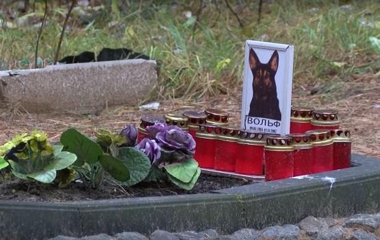 Daugavpils pilsētā tiek plānota oficiālu dzīvnieku kapu labiekārtošana