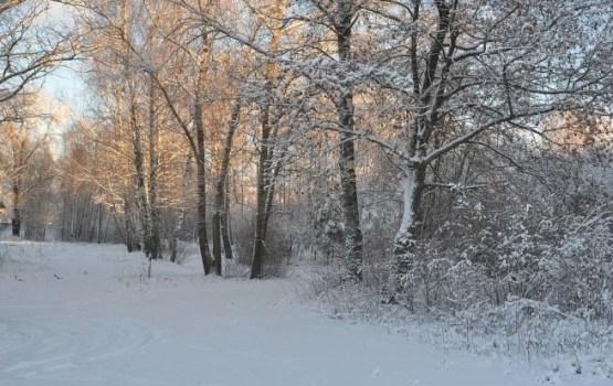 Trešdienas rītā sniegs un apledojums vietām Latvijā apgrūtina braukšanu