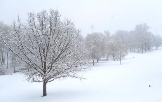 Tuvākajā diennaktī galvenokārt valsts dienvidos snigs, visvairāk - Daugavpils pusē