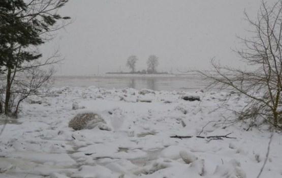 Ūdens līmenis Daugavā nav krasi mainījies