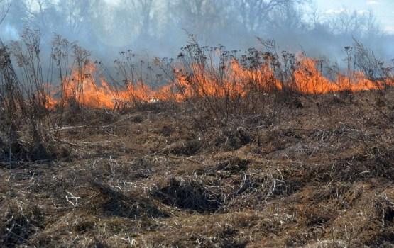 Piektdien Latvijā dzēsts 91 kūlas ugunsgrēks