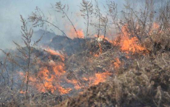Daugavpilī kūla degusi vairāk kā 30 hektāru platībā