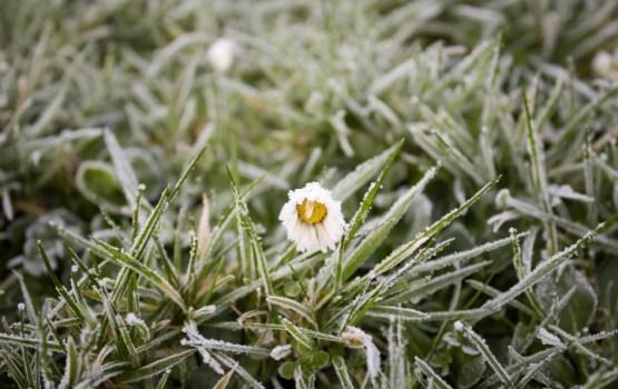 Trīs vietās Latvijā pārspēts aukstuma rekords