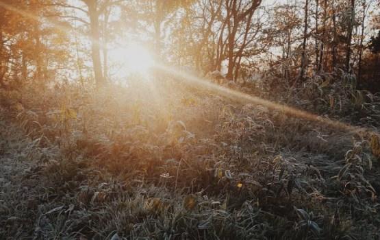 Saule spīdēs visu dienu, pastiprināsies vējš