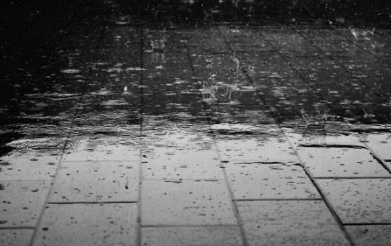 No dienvidrietumiem Latvijai tuvojas plaša lietus zona, naktī vietām līs stipri
