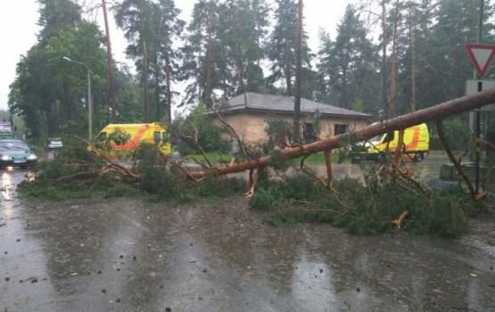 Pērkona negaiss rada postījumus Daugavpils pusē un virzās tālāk pāri Latgalei