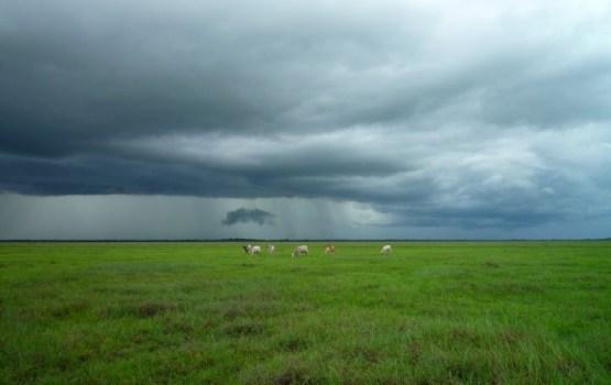 Otrdien daudzviet gaidāms ilgstošs lietus, Kurzemē uzspīdēs saule