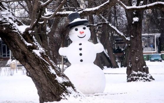 Nākamajos piecos gados Eiropā būs lielāka iespēja sagaidīt aukstu un sniegotu ziemu