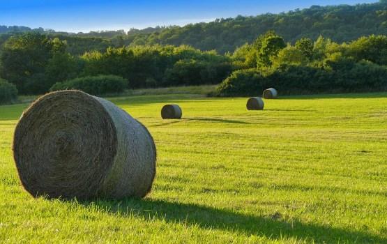 Aptauja: 60% Latvijas iedzīvotāju uzskata, ka ES atbalsts lauksaimniekiem ir pārāk mazs