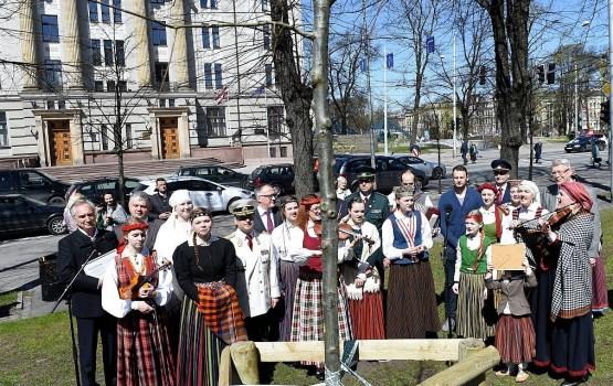 IeM aicina iedzīvotājus apceļot pirms gada uz Latvijas robežas iestādītos 100 ozolus