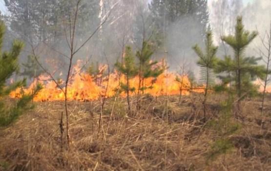 Īpaši piesardzīgiem ar uguni jābūt mežā