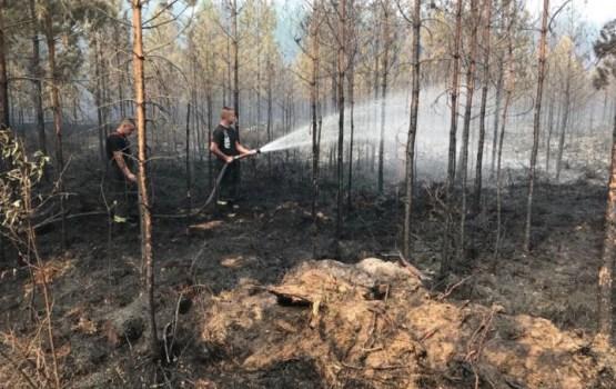 Jau trešo dienu turpina dzēst meža un kūdras ugunsgrēku Valdgales pagastā