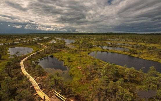 Dabas aizsardzības pārvalde aicina iesaistīties dabas aizsardzības plānu izstrādē