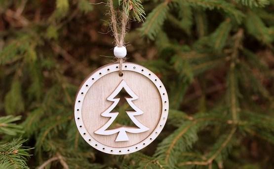 Arī šogad valsts mežos drīkstēs cirst eglīti Ziemassvētkiem