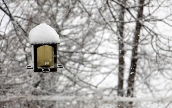 Sestdien ilgstoši līs, austrumu novados gaidāma atkala un sniegs