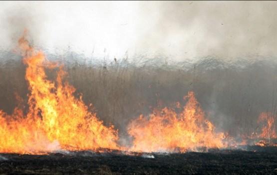 Reģistrēts šogad pirmais kūlas ugunsgrēks